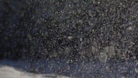 Μήκος σε πόδηα αργός-Mo Λαμπρή snowflakes πτώση ενάντια στο δάσος απόθεμα βίντεο