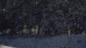 Μήκος σε πόδηα αργός-Mo Λαμπρή snowflakes πτώση στο δασικό υπόβαθρο απόθεμα βίντεο