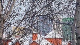 Μήκος σε πόδηα Δεκέμβριος χιονιού σημύδων πόλεων της Μόσχας hd απόθεμα βίντεο