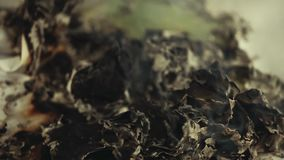 Μήκος σε πόδηα καπνού πυρκαγιάς εγγράφου hd απόθεμα βίντεο