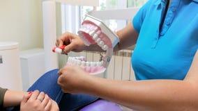Μήκος σε πόδηα κινηματογραφήσεων σε πρώτο πλάνο 4k του οδοντιάτρου που επιδεικνύει πώς να καθαρίσει κατάλληλα τα δόντια με την οδ απόθεμα βίντεο