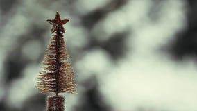 Μήκος σε πόδηα χιονιού παιχνιδιών δέντρων του FIR hd απόθεμα βίντεο