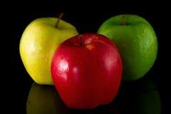 Μήλα δέντρων Στοκ Φωτογραφίες