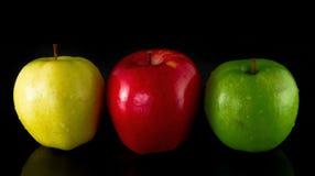 Μήλα δέντρων Στοκ Εικόνες