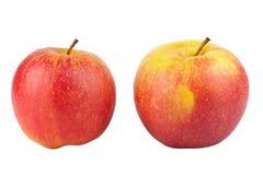 μήλα δύο Στοκ Φωτογραφία