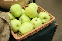 μήλα κίτρινα Στοκ Εικόνες