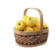 μήλα κίτρινα Στοκ φωτογραφία με δικαίωμα ελεύθερης χρήσης