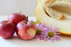 Μήλα και κομμένος το πεπόνι δίπλα στον αστέρα λουλουδιών σε ένα άσπρο υπόβαθρο Στοκ φωτογραφία με δικαίωμα ελεύθερης χρήσης