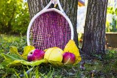 Μήλα και σταφύλια στοκ εικόνα με δικαίωμα ελεύθερης χρήσης