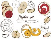 Μήλα, καρυκεύματα και σύνολο μούρων Στοκ Εικόνα
