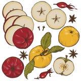 Μήλα, καρυκεύματα και σύνολο μούρων Στοκ Εικόνες