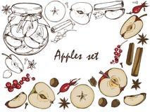 Μήλα, μαρμελάδα σε ένα βάζο, καρυκεύματα και σύνολο μούρων Στοκ εικόνες με δικαίωμα ελεύθερης χρήσης