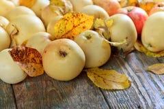 Μήλα με τον κίτρινο ξύλινο πίνακα φύλλων Στοκ Εικόνα