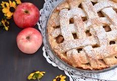 Μήλα πιτών της Apple στο μαύρο υπόβαθρο Στοκ Εικόνα