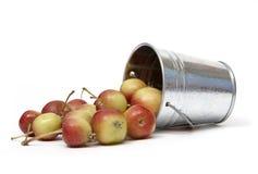 μήλα που ανατρέπονται Στοκ εικόνα με δικαίωμα ελεύθερης χρήσης