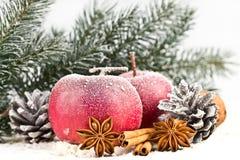 Μήλα, που κονιοποιούνται κόκκινα με τους κώνους χιονιού στοκ φωτογραφίες με δικαίωμα ελεύθερης χρήσης