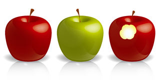 μήλα τρία διανυσματική απεικόνιση