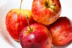 μήλα υγρά Στοκ Εικόνα