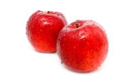 μήλα υγρά Στοκ φωτογραφία με δικαίωμα ελεύθερης χρήσης
