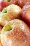 μήλα υγρά Στοκ εικόνες με δικαίωμα ελεύθερης χρήσης