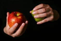 μήλα υγρά Στοκ Φωτογραφίες