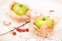 μήλα φρέσκα δύο Στοκ φωτογραφία με δικαίωμα ελεύθερης χρήσης