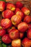 μήλα φρέσκα Ζωηρόχρωμη επίδειξη των κόκκινων μήλων στην αγορά Στοκ εικόνα με δικαίωμα ελεύθερης χρήσης