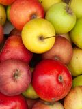 Μήλα στοκ φωτογραφία με δικαίωμα ελεύθερης χρήσης
