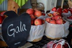 Μήλα Gala για την πώληση στο κέντρο του Byron στο Μίτσιγκαν Στοκ Εικόνες