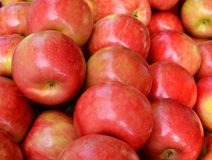 Μήλα Gala Στοκ Εικόνες
