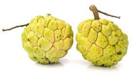 Μήλο ζάχαρης [squamosa Annona] Στοκ Εικόνες