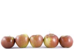 μήλο πέντε κόκκινο Στοκ Εικόνες