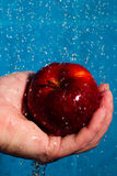 μήλο που πλένει Στοκ Φωτογραφία