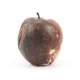 μήλο σάπιο Στοκ Εικόνα