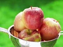 μήλο υγρό Στοκ εικόνα με δικαίωμα ελεύθερης χρήσης