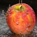 μήλο φρέσκο Στοκ φωτογραφία με δικαίωμα ελεύθερης χρήσης