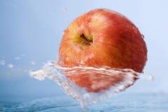 μήλο στοκ εικόνα