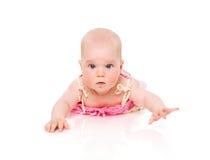 μήνας έξι μωρών στοκ εικόνες