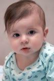 μήνας έξι μωρών Στοκ Φωτογραφία