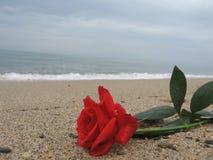 Μήνυμα της αγάπης στοκ εικόνες
