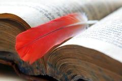 μήνυμα φτερών βιβλίων παλα&iota Στοκ Φωτογραφία