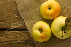 Μήλα δέντρων στο ύφασμα λινού Στοκ εικόνες με δικαίωμα ελεύθερης χρήσης
