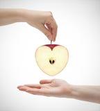 Καρδιά 2 της Apple Στοκ φωτογραφία με δικαίωμα ελεύθερης χρήσης