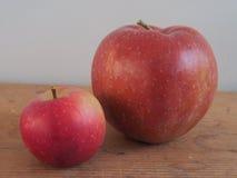 μήλα διαφορετικά δύο Στοκ εικόνες με δικαίωμα ελεύθερης χρήσης