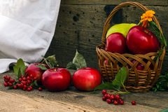 Μήλα και αχλάδια σε ένα καλάθι Στοκ Εικόνες