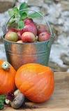 Μήλα και κολοκύθες Στοκ Φωτογραφίες