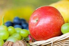 Μήλα και σταφύλια Στοκ φωτογραφία με δικαίωμα ελεύθερης χρήσης