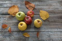 Μήλα και φύλλα στο ξύλινο υπόβαθρο πινάκων η έννοια φθινοπώρου απομόνωσε το λευκό Στοκ εικόνες με δικαίωμα ελεύθερης χρήσης