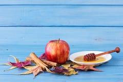 Μήλα, μέλι και κανέλα Στοκ Εικόνες