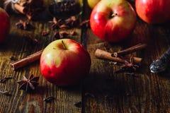 Μήλα με τα καρυκεύματα Χριστουγέννων Στοκ Φωτογραφίες